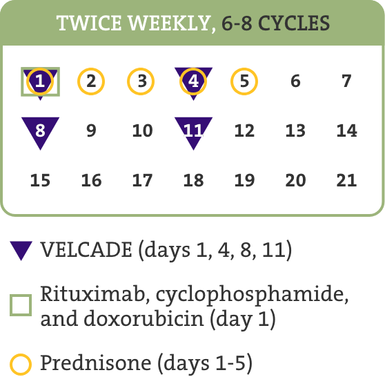 Treatment schedule for VELCADE (mantle cell lymphoma): twice weekly, 6-8 cycles